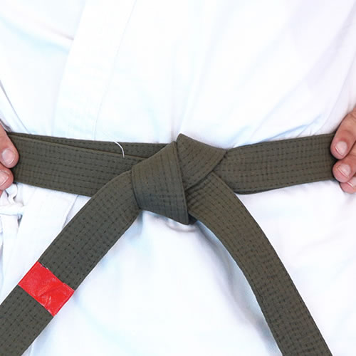 NSJJ - Red Tip Belt
