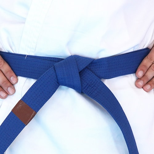 NSJJ Brown Tip Belt